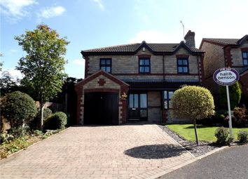 Thumbnail 4 bed detached house for sale in Tumbling Hill, Heage, Belper
