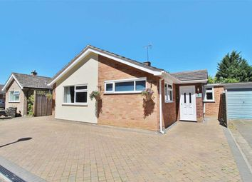 Thumbnail 4 bed bungalow for sale in West Lawn, Ipswich