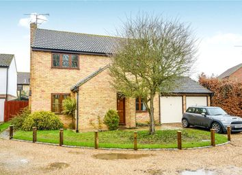Thumbnail Detached house for sale in Avocet Close, Feering, Colchester