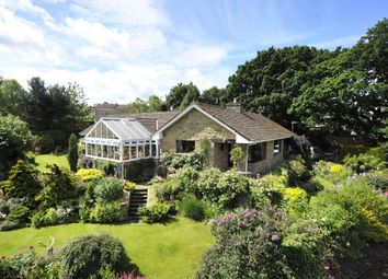 Thumbnail 3 bed detached bungalow for sale in Silverdale Close, Darley, Harrogate