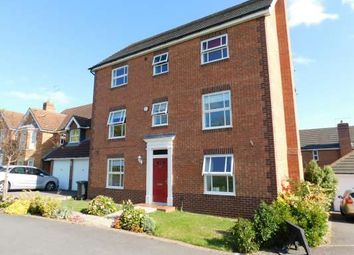 Thumbnail 4 bed detached house to rent in Malus Close, Hampton Hargate, Peterborough