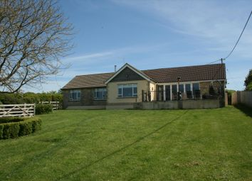 Thumbnail 4 bed bungalow for sale in Maybella, Caundle Marsh, Sherborne