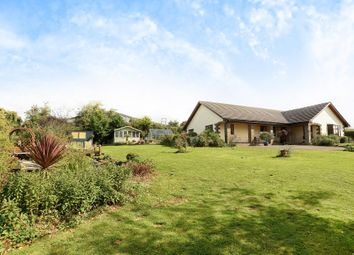 Thumbnail 4 bed detached bungalow for sale in Garway Hill, Herefordshire