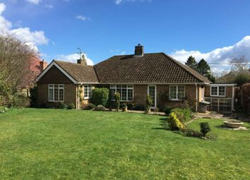 Thumbnail 4 bed bungalow to rent in Salisbury Road, Hungerford