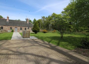 Thumbnail 3 bed bungalow to rent in Old Mains Fasque, Fettercairn, Laurencekirk