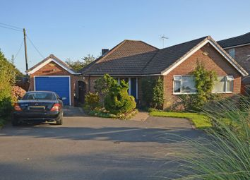 Thumbnail 3 bed detached bungalow for sale in Blackberry Lane, Four Marks, Alton, Hampshire