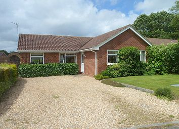 Thumbnail 3 bed bungalow for sale in The Warren, Holbury