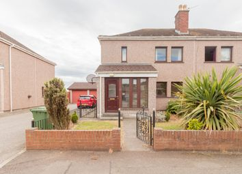 Thumbnail 3 bed semi-detached house to rent in Camperdown Drive, Arbroath