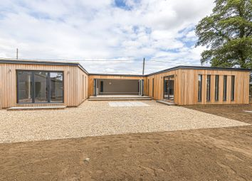 Thumbnail 4 bed detached bungalow for sale in Horsham Road, Cranleigh