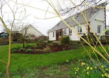 Thumbnail 3 bed detached bungalow for sale in Ty Coed, Cross Inn, Llanon, Ceredigion