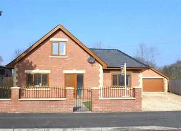 Thumbnail 4 bedroom detached house for sale in Field Maple Drive, Ribbleton, Preston