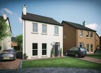 Thumbnail 4 bedroom detached house for sale in Moorfield Avenue, Comber, Newtownards