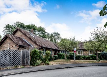 Thumbnail 4 bed detached bungalow for sale in Brookside, Renhold, Bedford