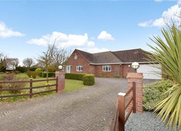 Thumbnail 6 bed bungalow for sale in Harwich Road, Little Clacton, Clacton-On-Sea