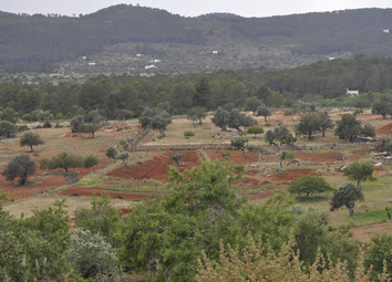 Thumbnail Land for sale in Parcela Atzaró, Carretera De San Lorenzo A Sta Gerrudis, Spain