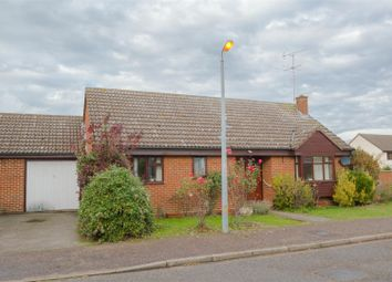 Thumbnail 2 bed detached bungalow to rent in Churchfields Drive, Steeple Bumpstead, Haverhill