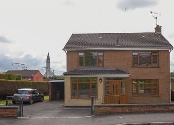 Thumbnail 4 bed detached house for sale in 15, Corrina Park, Belfast