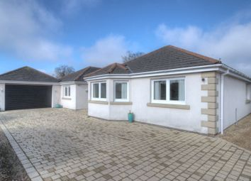 Thumbnail 4 bed bungalow for sale in Cargo, Carlisle