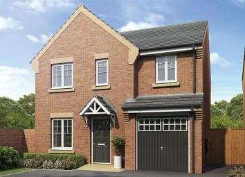 Thumbnail 4 bedroom detached house for sale in Joiners Gardens, Willowburn Park, Alnwick, Northumberland