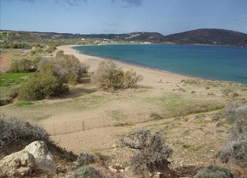 Thumbnail Land for sale in Palaikastro, Lasithi, Gr