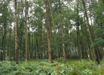 Thumbnail Land for sale in Weston Bank, Stafford
