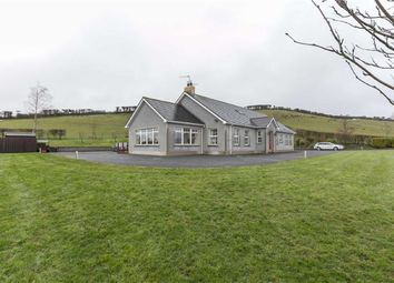 Thumbnail 5 bed detached bungalow for sale in Drumgooland Road, Seaforde, Down
