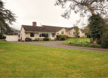 Thumbnail 6 bedroom detached bungalow for sale in Culmstock, Cullompton