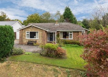 3 bed detached bungalow for sale in Steeres Hill, Rusper, Horsham RH12