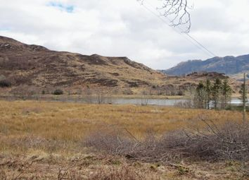 Thumbnail Land for sale in Kyle