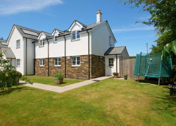 Thumbnail 3 bed semi-detached house for sale in Dens Meadow, Blunts