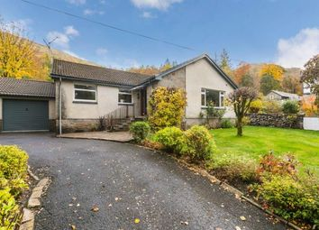 Thumbnail 4 bed bungalow for sale in Arrochar, Argyle And Bute, Scotland, United Kingdom