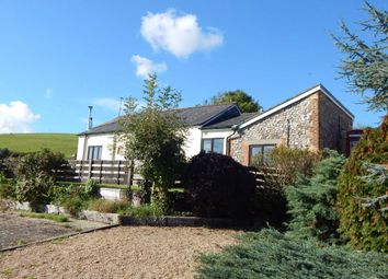 Thumbnail 2 bed barn conversion for sale in Saddle Street, Thorncombe, Dorset