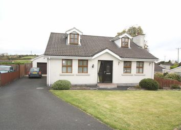 Thumbnail 4 bedroom detached bungalow for sale in The Grove, Ballynahinch, Down