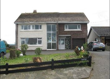 Thumbnail 4 bed detached house to rent in Brynhoffnant, Llandysul