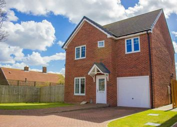 Thumbnail Detached house for sale in Nursery Gardens, Seaton Delaval, Whitley Bay