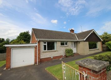 Thumbnail 3 bed bungalow for sale in Aberdelghy Park, Lambeg, Lisburn