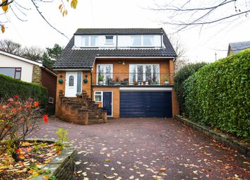 Thumbnail 4 bed detached house for sale in Abbey Lane, Sheffield