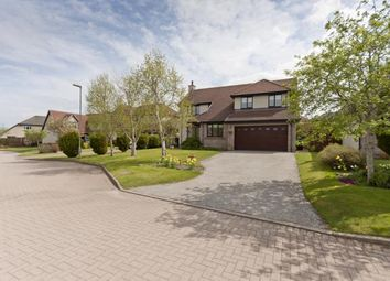 Thumbnail 5 bedroom detached house to rent in Meadowlands Avenue, Westhill, Aberdeen
