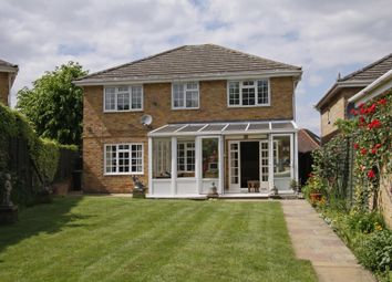 Thumbnail 4 bed detached house to rent in Woodhayes Road, Wimbledon