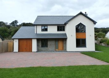 Thumbnail 4 bedroom detached house for sale in Capel Bangor, Aberystwyth