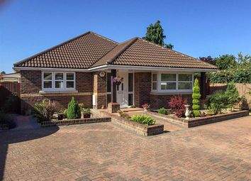Thumbnail 3 bedroom detached bungalow for sale in Beane Road, Watton At Stone, Hertford