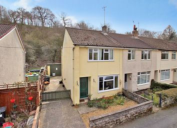 Thumbnail 3 bed semi-detached house for sale in Llangammarch Wells