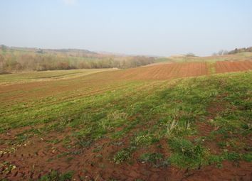 Thumbnail Land for sale in Hillhampton Farm, Hillhampton, Great Witley