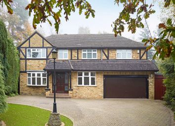 Thumbnail 5 bed detached house for sale in Murray Court, Ascot