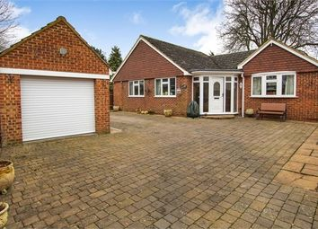 Thumbnail 3 bed detached bungalow for sale in Staines Road, Staines-Upon-Thames