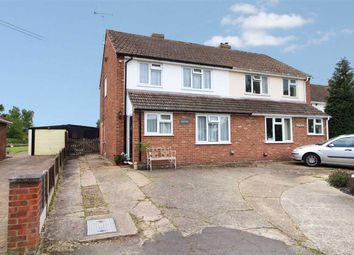 Thumbnail 3 bed semi-detached house for sale in Amore, Mill Road, Boxted, Colchester