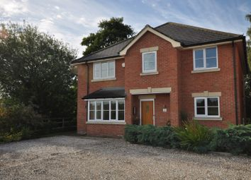 Thumbnail 5 bed detached house to rent in Rossett