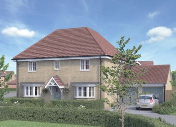 Thumbnail 4 bed detached house for sale in The Holly At St Luke's Park, Runwell Road, Runwell, Essex