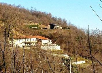 Thumbnail 7 bed equestrian property for sale in Busca, Cuneo, Piedmont, Italy