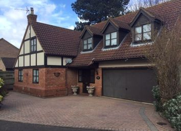Thumbnail 5 bed detached house to rent in Hammond Way, Somersham, Huntingdon